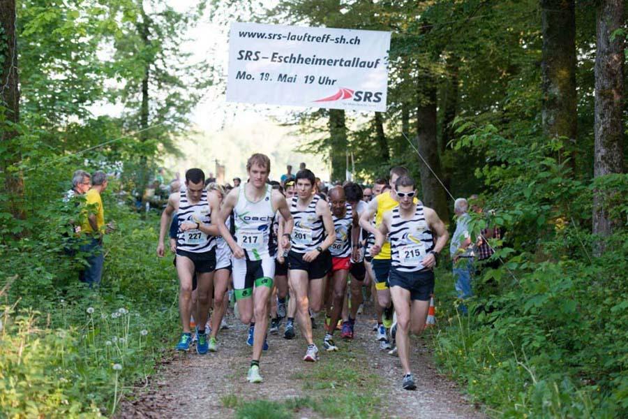 Eschheimer-Waldlauf-Blog